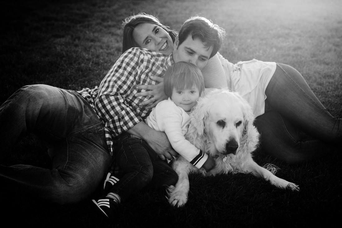 sesion de fotos de familia con perros en madrid